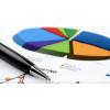 2018-2020年中国亮片丝市场分析供需预测专项价值趋势报告