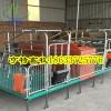 贵州毕节整体复合母猪产床双体配套养猪设备厂家发货