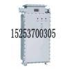 正品特卖BQX52系列防爆变频器(‖B)