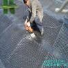 郑州园林绿化排水板4公分排水板