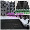 东营车库种植排水板厂家+2公分蓄排水板=现货供应
